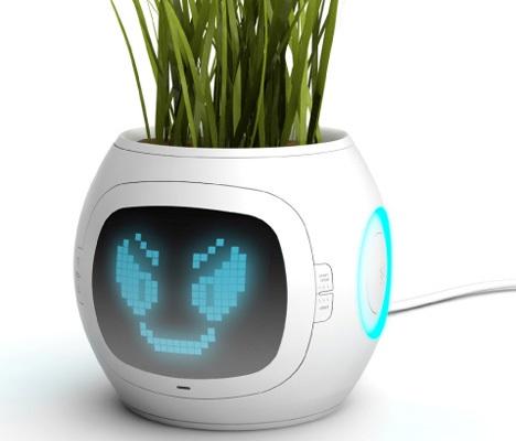 novas invenções vaso de plantas digital
