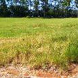 terreno em porangaba a venda condominio ninho verde
