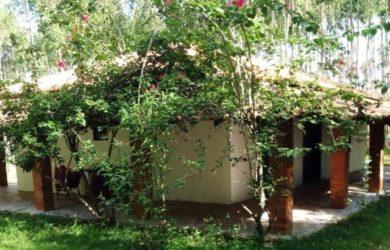 Sitio a Venda em Piramboia