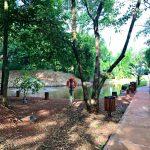 condominio monte verde terreno a venda